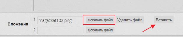 magazkat_584.png