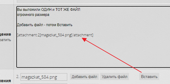 magazkat_585.png